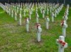 """Prelekcja """"Cmentarze wojskowe z okresu I wojny światowej..."""